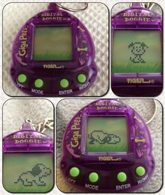 Giga Pets! I had this one and like 3 others. They were the coolest lol
