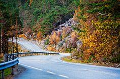 driving. road trip #HOCSXSW nkstylianou@gmail.com