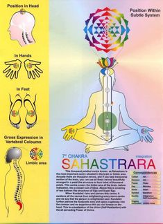 The Crown Chakra or Sahasrara Chakra, Sahaja Yoga Sahaja Yoga Meditation, Yoga Kundalini, Guided Meditation, Pranayama, Meditation Music, Mindfulness Meditation, Yoga Chakras, Reiki Meditation, Chakra Healing