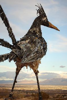 Trash Bird aka Recycled Roadrunner    Outside of Las Cruces, New Mexico, Interstate 10