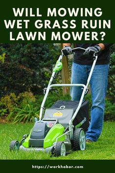 Will Mowing Wet Grass Ruin Lawn Mower? Many people ask this question as they don't want to damage their lawn mowers. Lawn Mower Maintenance, Lawn Mower Repair, Cheap Lawn Mowers, Pond Liner, Swimming Pool Landscaping, Paint Line, Top Soil, Different Plants, Lawn Care