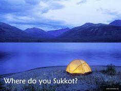 Where do you Sukkin?