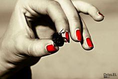 la femme rouge  by driss el yousfi