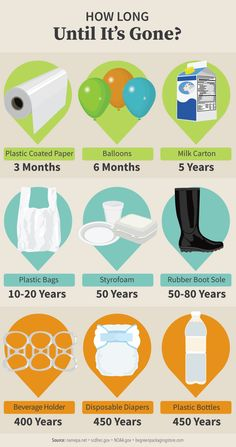 Guide to Eliminating Plastic: How Long Does Plastic Take to Biodegrade