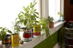 vintage can planter - Google Search