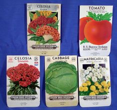 Vintage Seed Packets from and