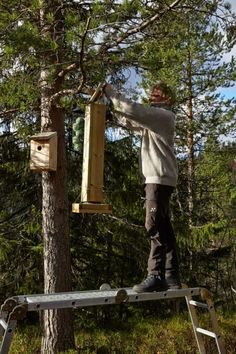 MAT: Bent fyller på frø i fuglemateren han selv har laget, etter oppskrift i Hytteliv. Cabin Interiors, Edinburgh, Bird Feeders, Cottage, Outdoor Decor, Home Decor, Decoration Home, Room Decor, Cottages