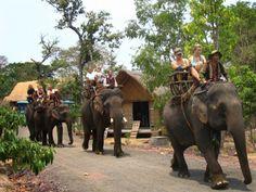 Những địa điểm du lịch hấp dẫn ở Đắk Lắk