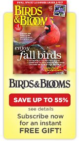 Top 10   Birds & Blooms  all kinds of top 10's backyard vines,container plants,Top 10 Drought Tolerant Plants
