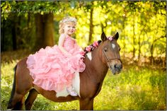Princess and her Pony Photo Session | Child Portrait Photographer Dallas ,GA | Princess Themed Photo session ~ Paris Mountain Photography Blog