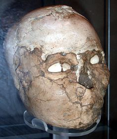 Neolithic skull, Jericho, c. 6500 BCE - BM2005 | by Stephen Bartlett Travels