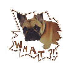 T-shirt design with my dog !! :) #frenchie #fashion