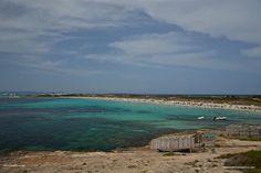 Illetas - Mediterranea Pitiusa la Naviera de Formentera