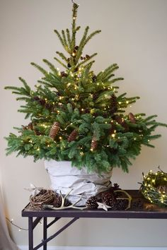 super Decorating a Christmas tree Christmas tree decorations are made from cones of course. Make Christmas decorations yourself. DIY decoration with cones homemade … - Dekoration Site / 2019 Little Christmas Trees, Noel Christmas, Country Christmas, Christmas Decorations To Make, All Things Christmas, Winter Christmas, Holiday Decor, Natural Christmas Tree, Tabletop Christmas Tree
