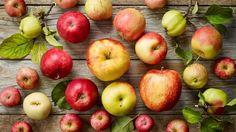 InfoNavWeb                       Informação, Notícias,Videos, Diversão, Games e Tecnologia.  : 5 boas razões para comprar maçãs orgânicas