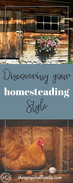 What kind of homesteader are you? You want a peaceful homestead life, but what matters most to you health, nature, security... discovering your homesteading style