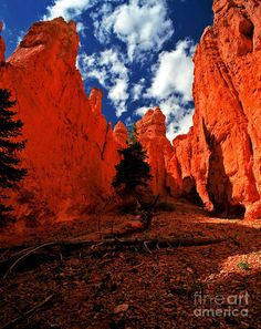 ✮ Fabulous Picture of Bryce Canyon - Utah