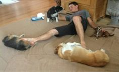 Multitasking with 4 dogs.... Funny
