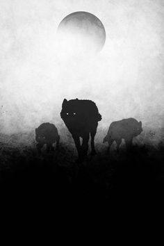 There are nights when the wolves are silent and only the moon howls, - George Carlin. Your wolfpack artwork It is printed on matte, ultra smooth, archival paper. It is made with the best and boldest inks in the world. Your full moon print is fade resistant, and remains extremely