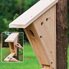 Plans of Woodworking Diy Projects - audubon birdhouse plans Bird House Feeder, Bird Feeders, Woodworking Projects Diy, Diy Projects, Project Ideas, Woodworking Tools, Woodworking Equipment, Cardinal Bird House, Free House Plans