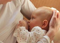 Смазка из желёз Монтгомери обладает бактерицидным действием и привлекает новорождённого к материнской груди.