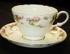Shelley ROSE FESTON HENLEY Tea cup and saucer Teacup
