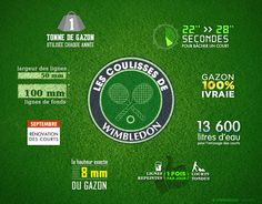 Some facts about Wimbledon courts