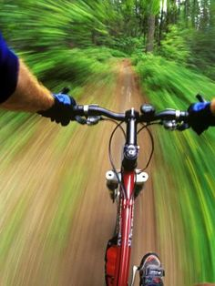 Mountain Bike Trail Riding Photographic Print by Chuck Haney at Art.com