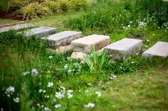 Stepping stones over wild flower drainage channel. At the olympic park, London.