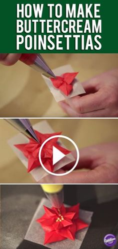 Buttercream Flower Series: How to Make Poinsettias For this lesson in buttercream flowers you will learn how to make the beautiful poinsettia, which is prefect for the holiday. (how to make frosting flowers) Frosting Techniques, Frosting Tips, Buttercream Frosting, Buttercream Ideas, Buttercream Flowers Tutorial, Buttercream Decorating, Buttercream Flower Cake, Icing Tips, Cake Decorating Techniques
