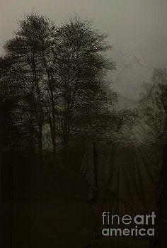 Alexander Vinogradov - The shadows of the past.