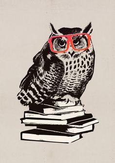 'The Smart Owl' by Budi Satria Kwan