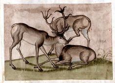 a familiar 'trick' picture motif -- 3 stags with a common head -- from the Jenisch album