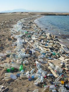 Organic farming, don't litter at beaches. pollution 40 Heartbreaking Pictures of Water Pollution