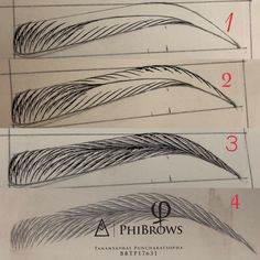 Microblading Eyebrows : Practice step by step Tananyaphat puncharatsopha Thailand Eyebrow Makeup Tips, Permanent Makeup Eyebrows, Eye Makeup, Mircoblading Eyebrows, How To Draw Eyebrows, Drawings Of Eyebrows, Korean Eyebrows, Eye Drawing Tutorials, Drawing Techniques