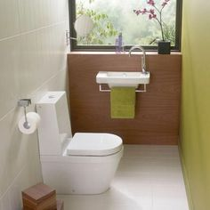 This style or concealed cistern style? See other pins for examples