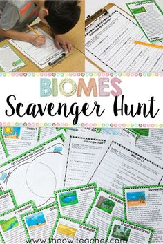 Biome sorting mats for forests biomes kids learning and free ecosystems scavenger hunt reading activity sciox Gallery