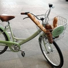 Vintage French Bicycle Delivery   bread delivery bike. vintage bike. french bread. green. photography.