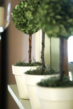 Mini Spring Topiaries... and a tutorial! • A Time for Everything