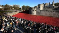 11-9-14 Remembrance Sunday Thousands observed the two minutes of silence at the Tower of London, where an installation of ceramic poppies commemorates fallen soldiers