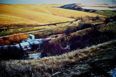 Winter's rest by Christy Carter · 365 Project
