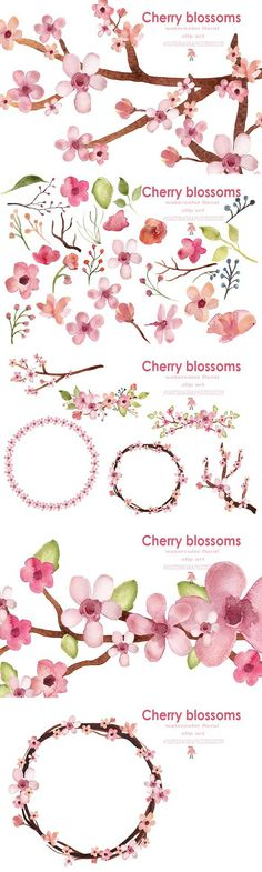 Cherry blossom watercolor clip art. Watercolor Flowers