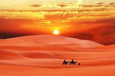 砂漠 - Google 検索