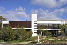 Rockfeller University Restaurant / XTO architectes  - wille  WOOD   work