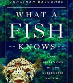 What A Fish Knows: The Inner Lives Of Our Underwater Cousins PDF