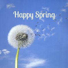 March 20, 2014- Today is the first day of Spring.  It's hard to believe how fast Winter 2013-2014 went.  Happy first day of spring! :)