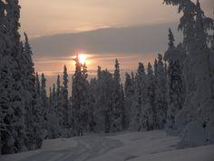 Luosto, Lapland, FI Lapland Finland, Snow And Ice, Let It Snow, Four Seasons, National Parks, Xmas, Spaces, Mountains, Natural