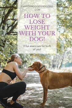 11 Exercises you can do with your Dog! Fun Exercises, Fun Workouts, Workout Routines, Dog Care Tips, Pet Care, Goldendoodle Training, How To Stay Healthy, Healthy Tips, Training Your Dog
