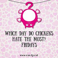 I Love Chicken! #cats #cat #candycat #funny #TGIF #food