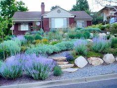 Fabulous Xeriscape Front Yard Design Ideas and Pictures 12 Fabelhafte Xeriscape - Vorgarten - Design Low Water Landscaping, Front Yard Landscaping, Landscaping Ideas, Outdoor Landscaping, Natural Landscaping, Landscaping Software, Backyard Ideas, Colorado Landscaping, Shade Landscaping